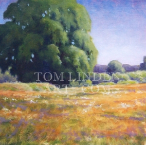 "Oak Ridge: Oil on Canvas 12"" x 12"""