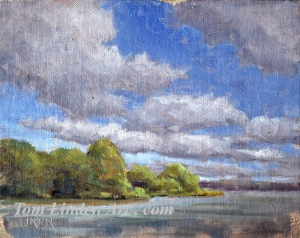 Reflections at Rock Cut - Plein Air - Oil on Canvas Panel - 8 x 10